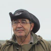 Nigel H Bahrani