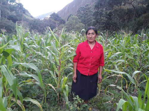 Laura lucia Enriquez minga