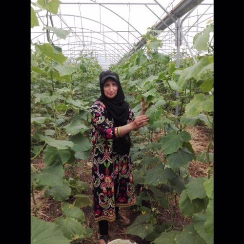 Fatima Salahat