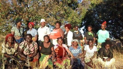 Progress Buvwubi Group