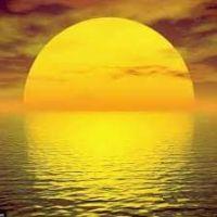 Sunnymeed