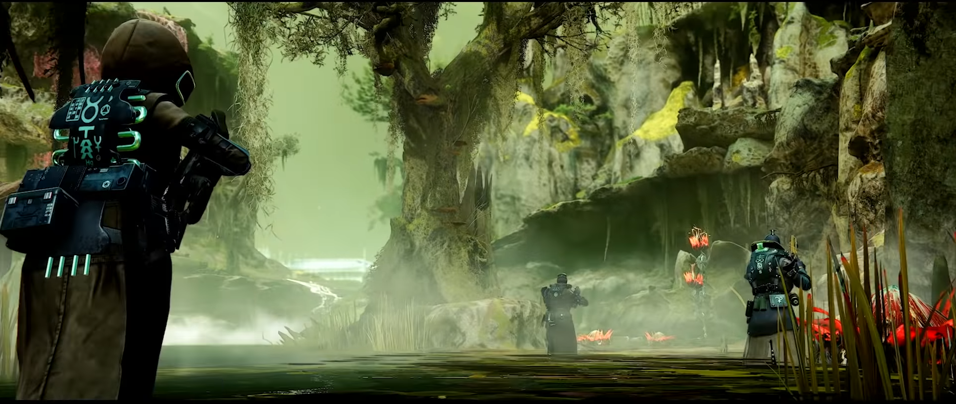 The Witch Queen's Swamp