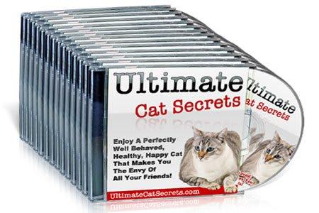 ultimate cat secrets