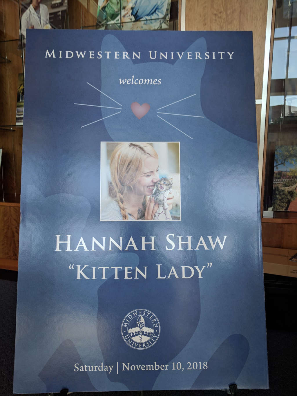 Cover Image for MEETING KITTEN LADY