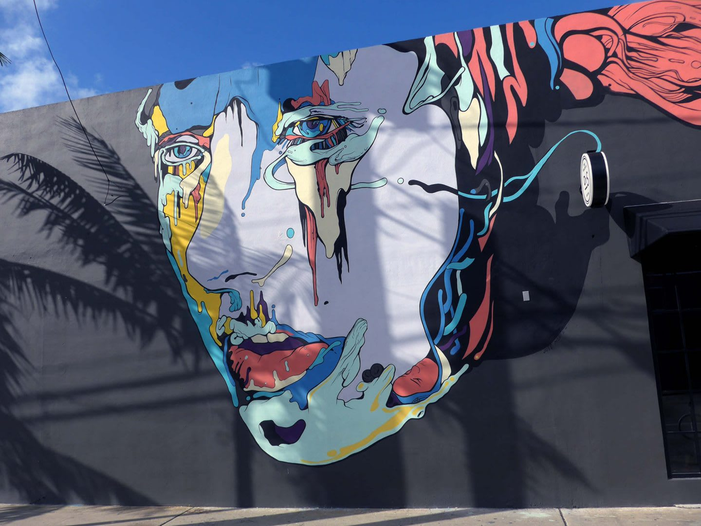 a painting in the design of a face is on a black wall on the streets of Miami. painting, mural, creativity, street art