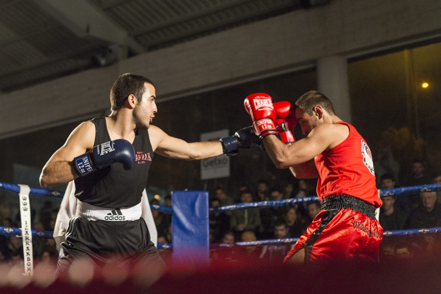 Two man fight in a boxing ring. boxing, sport, competition, strong, challenging