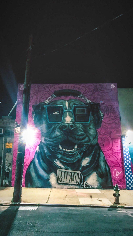 Grafitti bulldog with headphones watching pedestrians through glasses on house wall in Brooklyn, New York, grafitti dog, animal street art, creativity, urban, inspiration, street art, Brooklyn, New York, GamePlan A