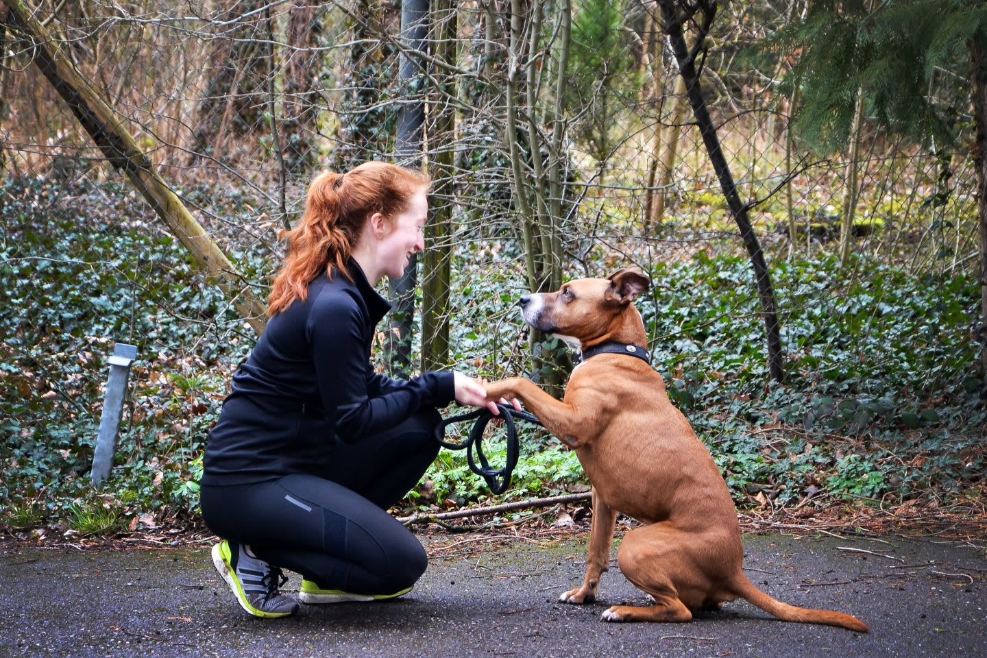 A female runner is sitting on her haunches and holding the paw of a brown dog, which is sitting vis-a-vis. running, dog running, purpose-driven life