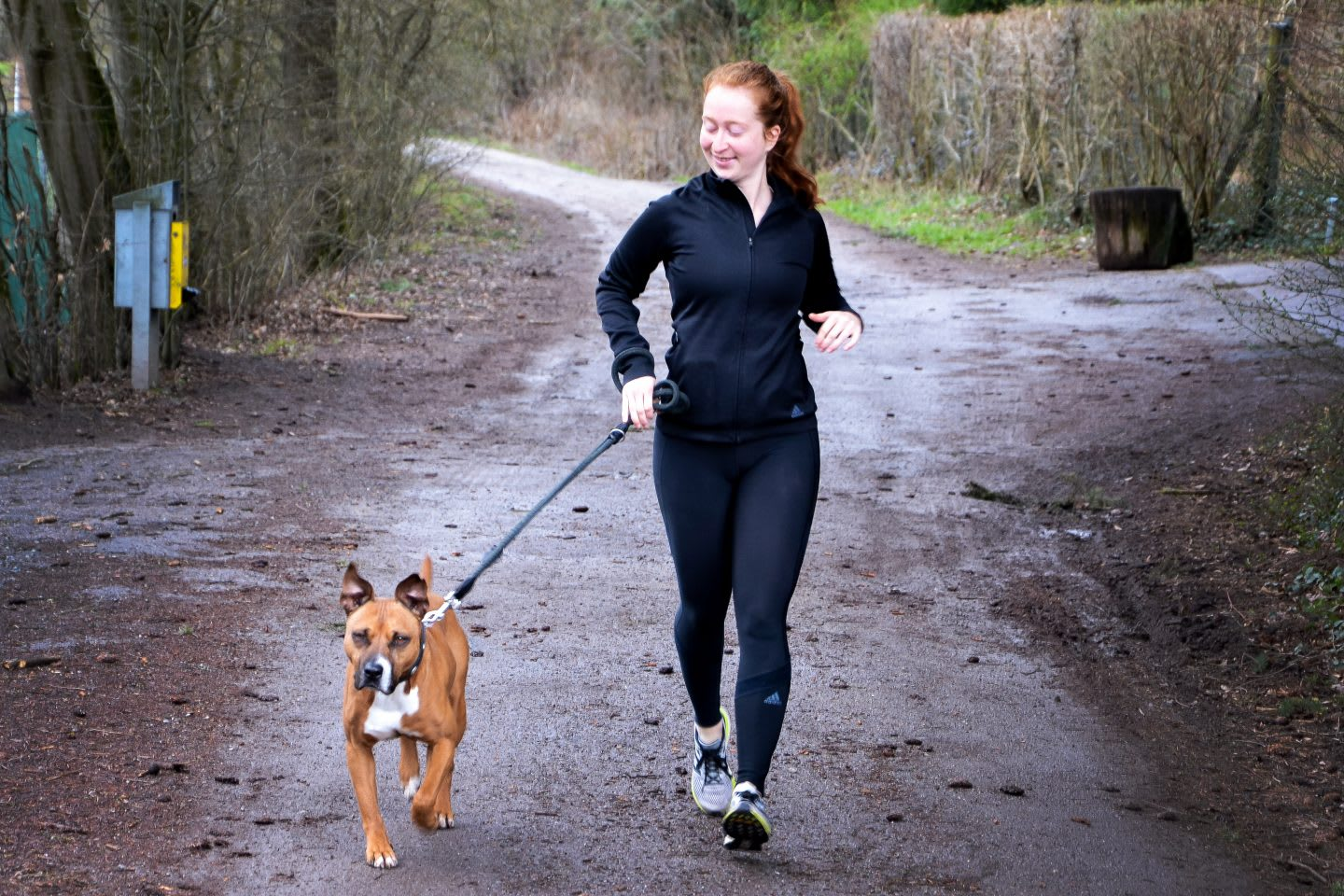 A female runner is running with a dog on a forest track. dog running, purpose-driven life, fitness
