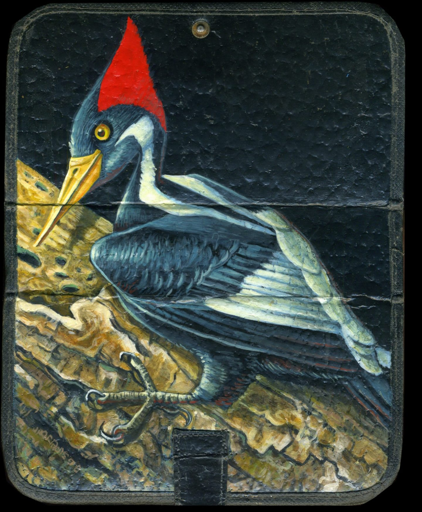 Painting of ivory hornbill bird on case, art, artwork, painting, creativity, Brett Superstar, adidas, employee