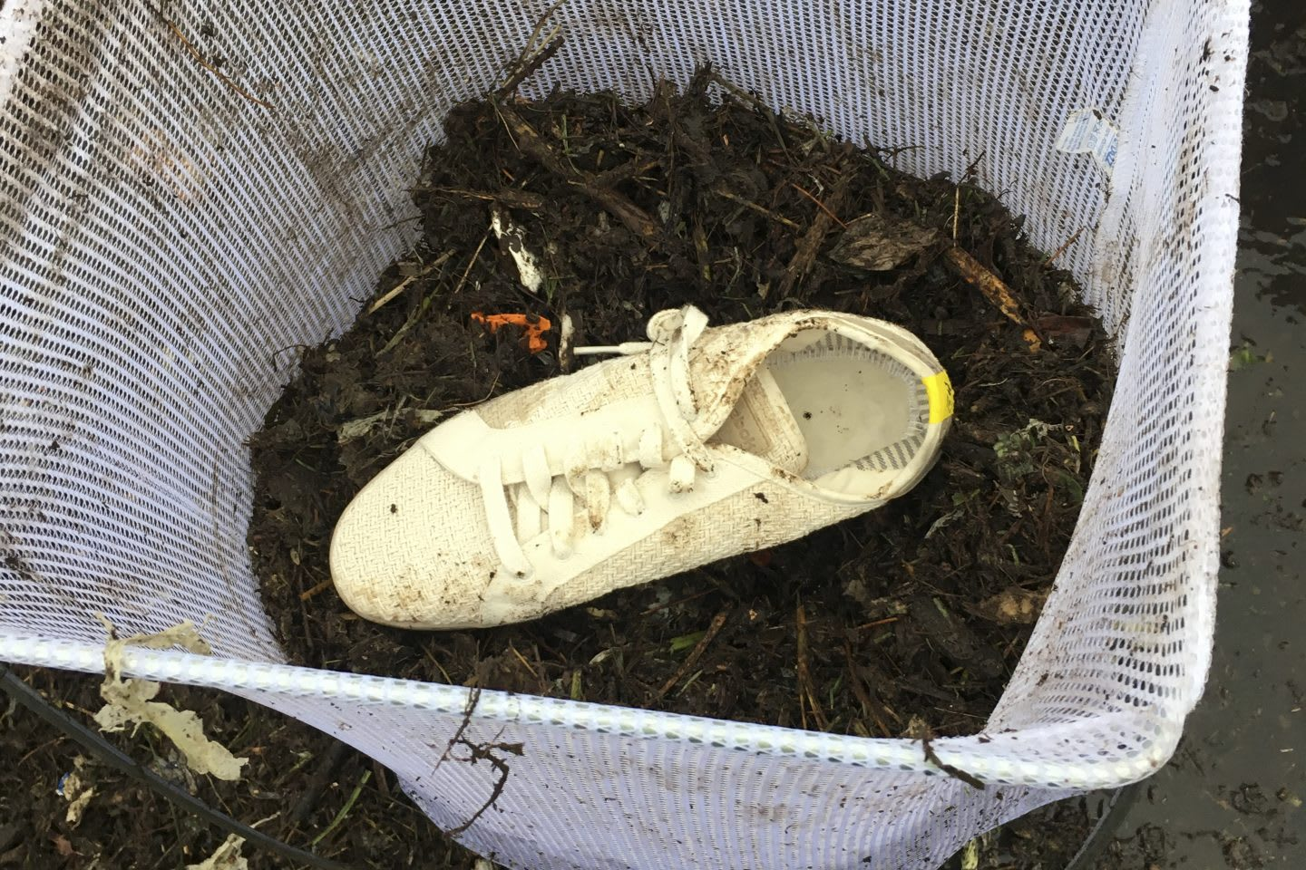 Reebok shoes in the compost bin, plant-based, sustainability, dirt, Reebok