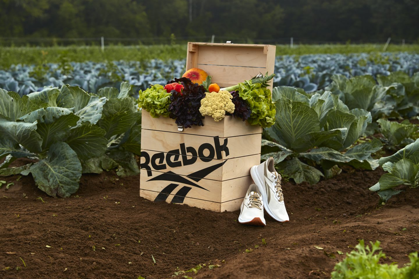 Reebok Forever Floatride GROW with a box of vegetables in a farm, Sienna Farms, Reebok, sustainability