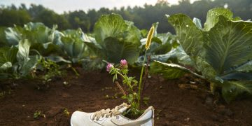Reebok Floatride Forever GROW shoe in a farm with plants, vegetables, plant-based, shoes, performance, sustainable, eco-friendly, Reebok