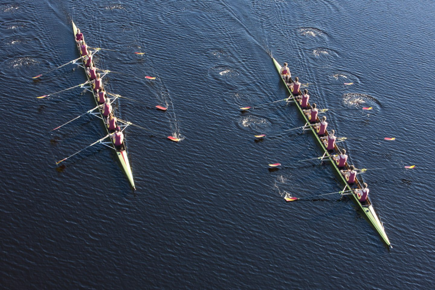 Elevated view of two rowing eights in water, rowing, rowers, sports, fitness, teamwork, endurance, race