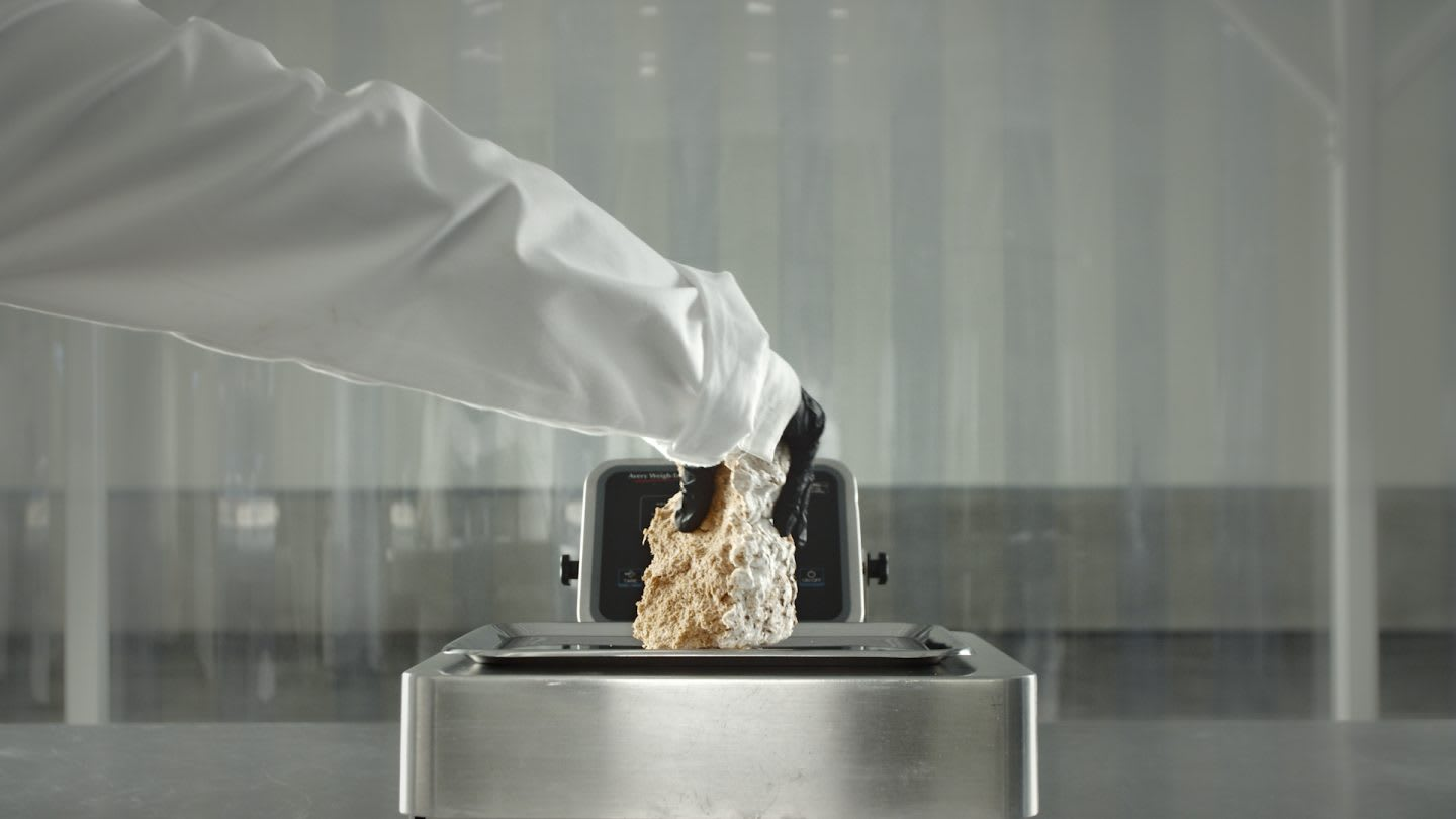 Scientist wearing a white lab coat in a lab, Bolt Threads, mushrooms, mycelium, adidas, partnership, innovation, materials