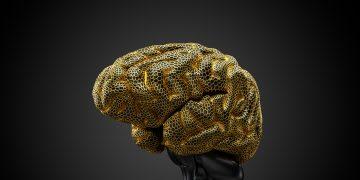 Brain surrounded by golden mesh, human, brain, science, biology, neurodiversity