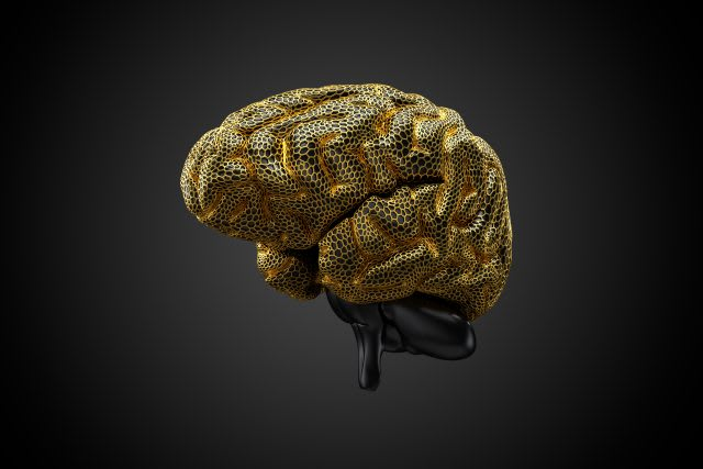 Brain surrounded by golden mesh, human, brain, science, biology, neurodiversity