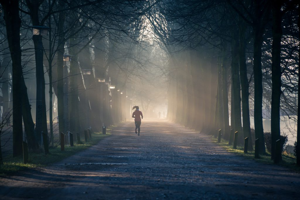 Woman running at night time through tree lined street, sunset, sunrise, darkness, sports, fitness, running
