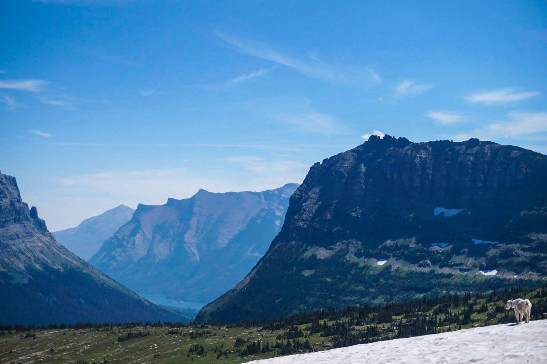 Glacier National Park USA nature