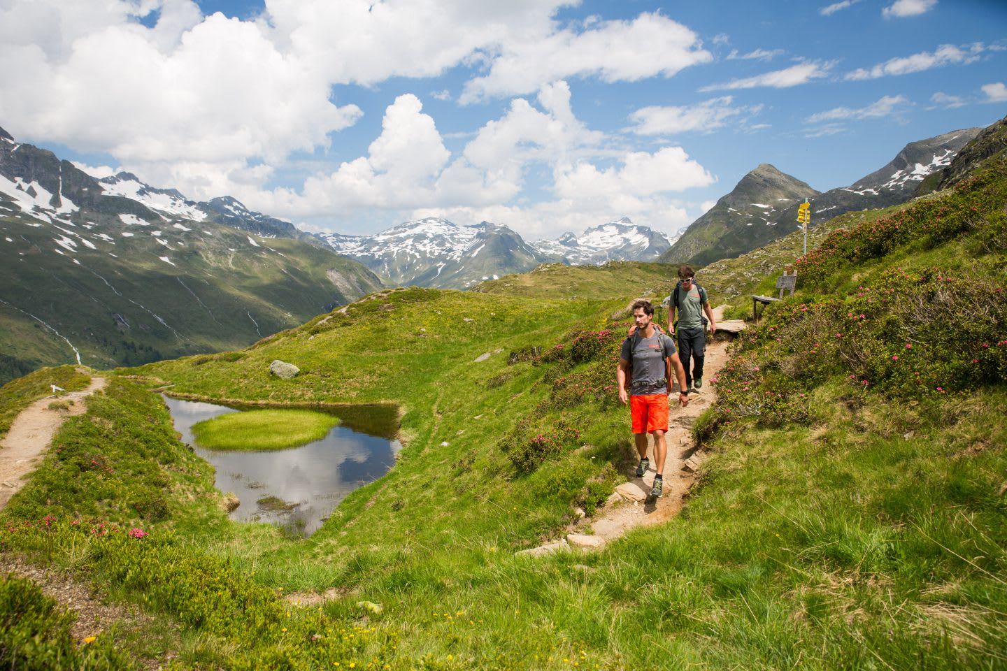 mountaineers-hiking-mountains-alps-terrex-mountain project