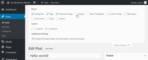 wordpress classic post editor - screen options excerpt checkbox