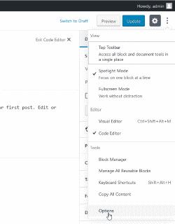 wordpress gutenberg post editor options