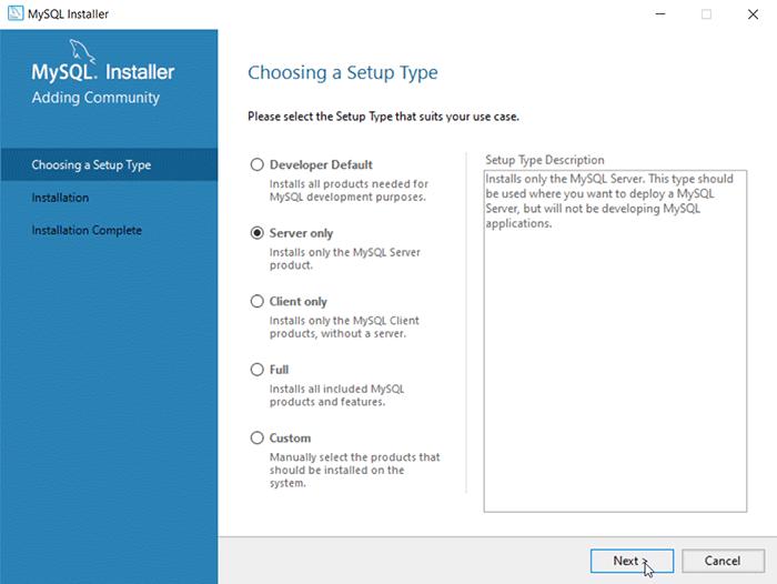 Windows MySQL Installation Step - Choosing a setup type