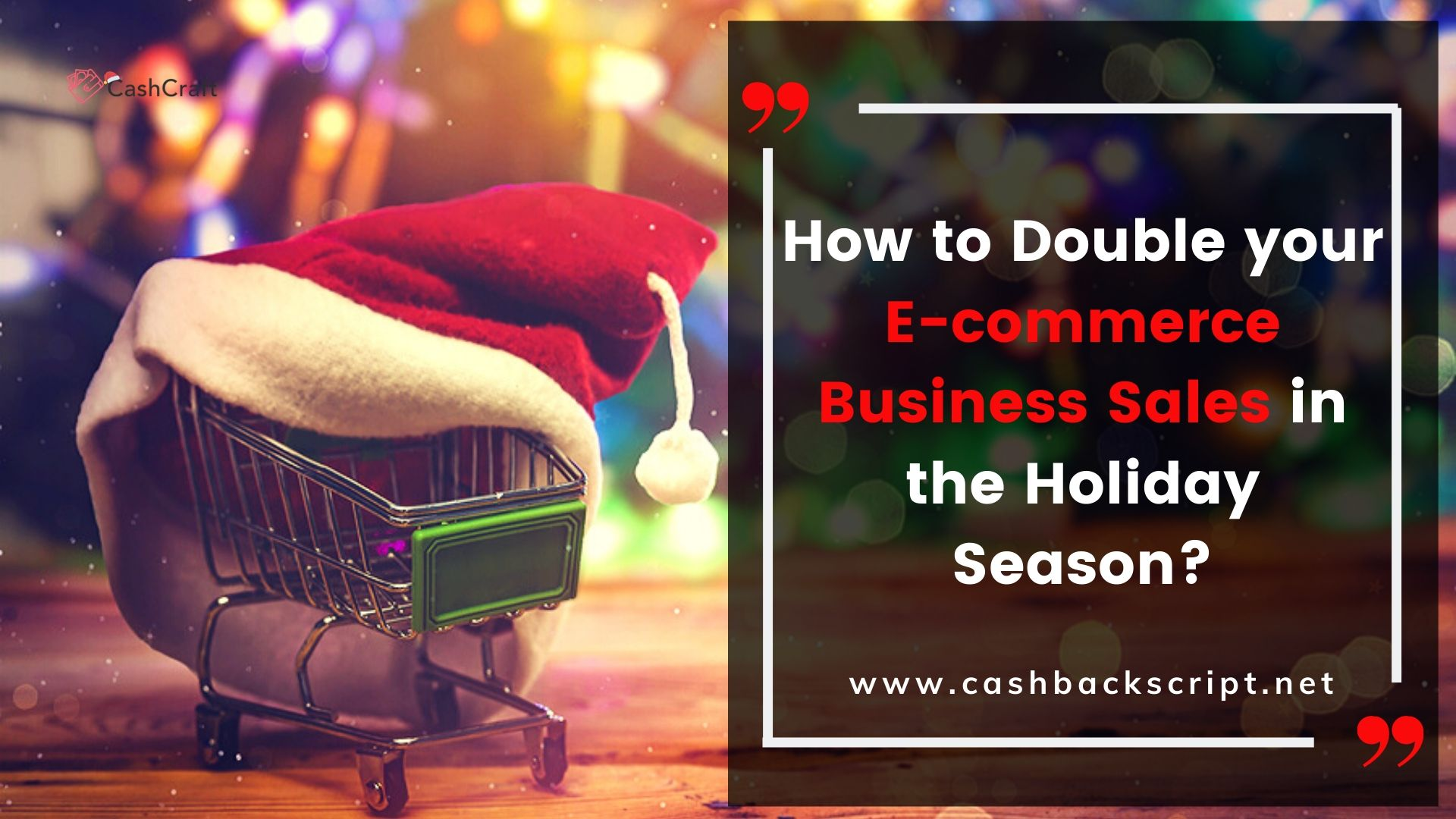 How to Double your E-commerce Business Sales in the Holiday Season?