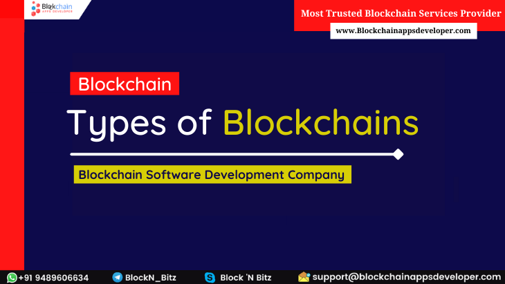 What are the Different Types of Blockchains? - Decide which one is suitable for your Business
