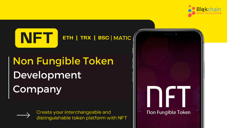 NFT Development Company - Everything Covered