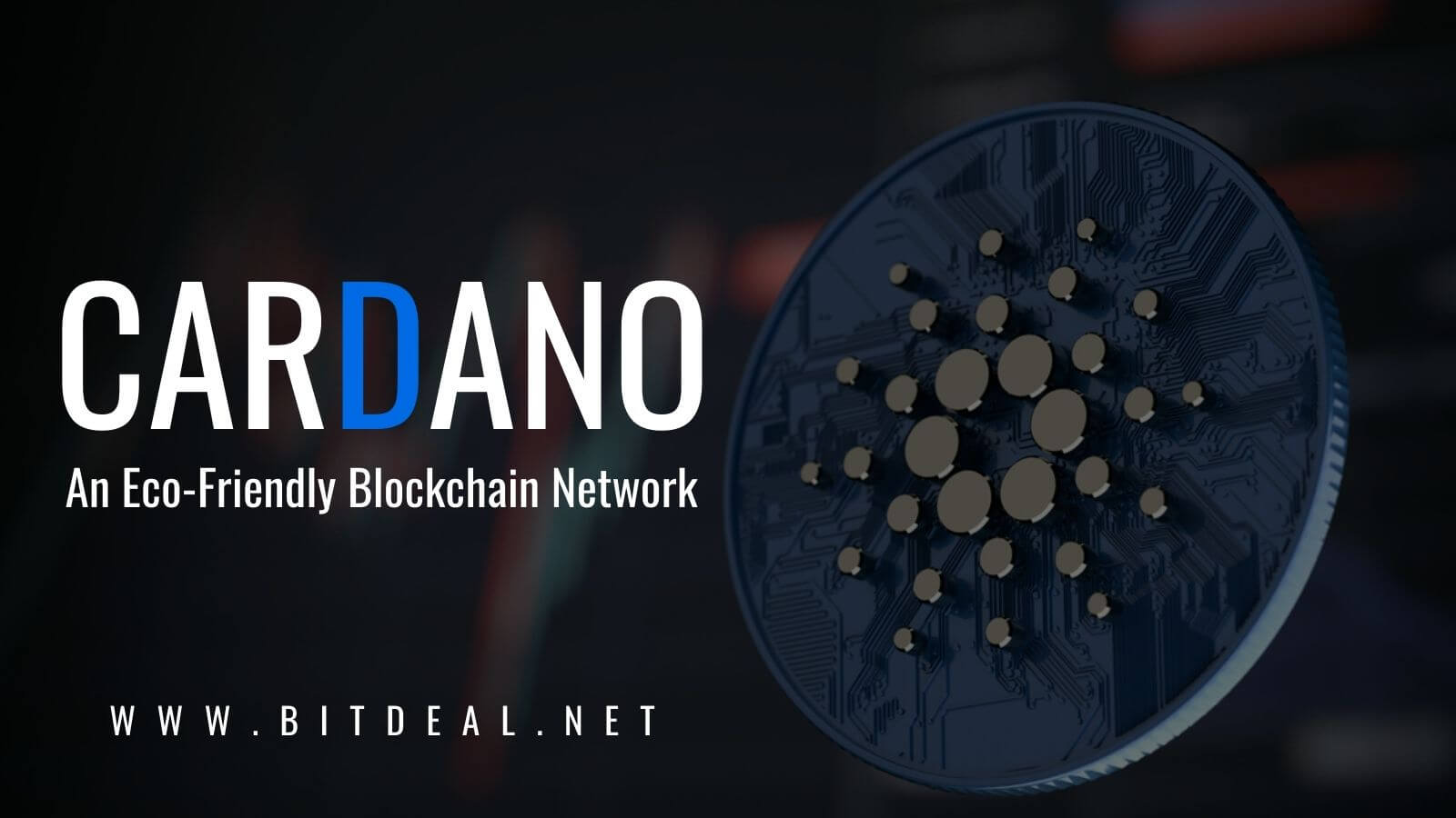 A Beginners Guide To Cardano Blockchain