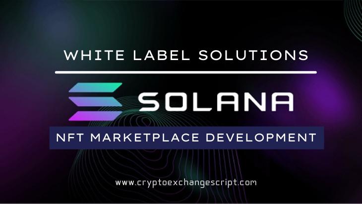 Solana Based NFT Marketplace Development - Coinjoker