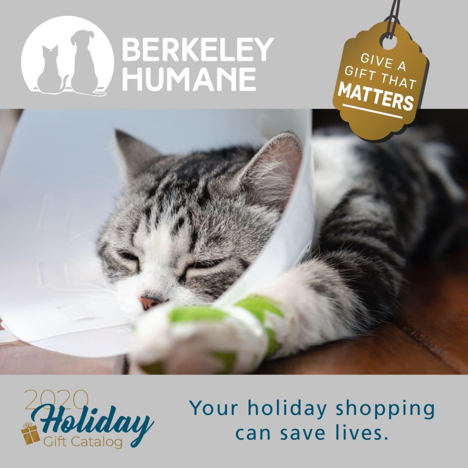 Gifts at Berkeley Humane