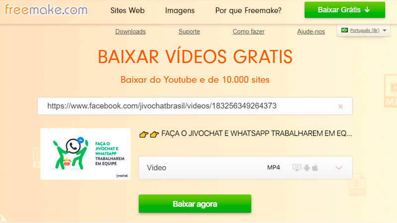 Captura de tela de como baixar vídeo do Facebook usando o Freemake