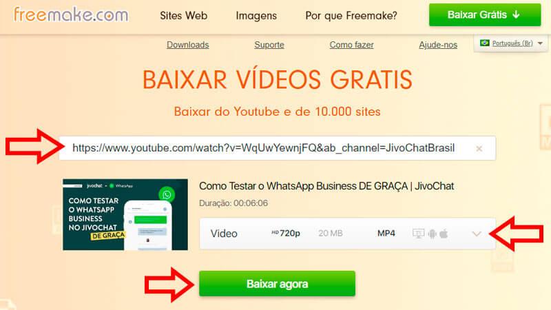 Captura de tela do FreeMake ensinando como fazer um download no YouTube