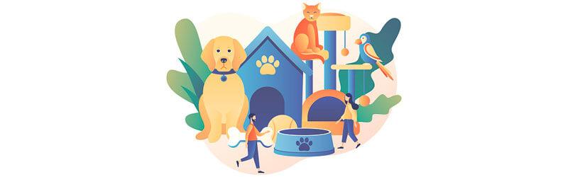 Cão na frente de sua casinha com um gato e um pássaro ao lado