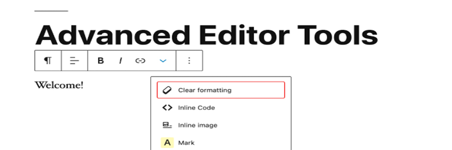 Interface do Advanced Editor Tools para WordPress