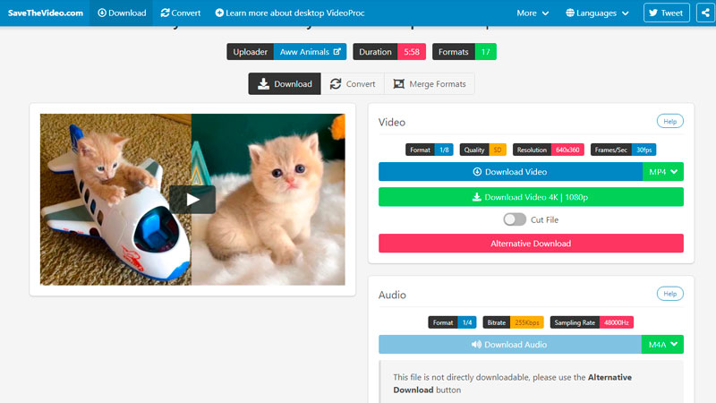 Captura de tela do site SavetheVideo