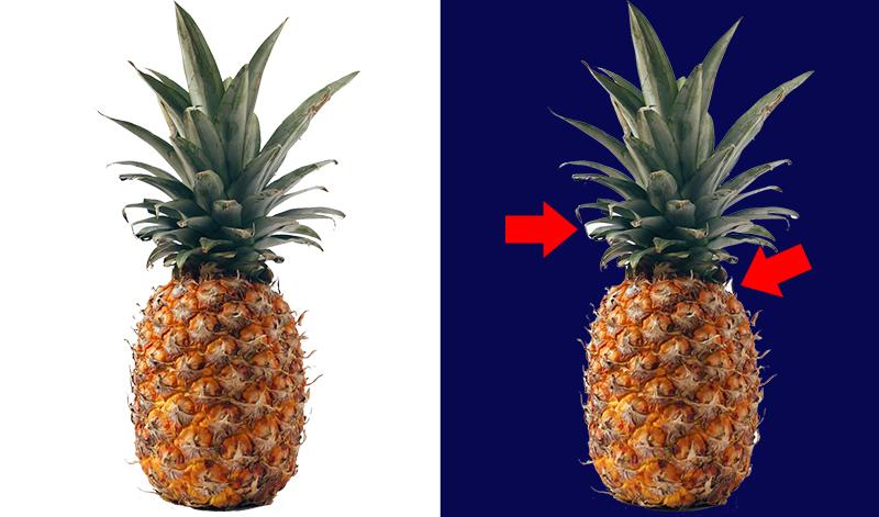 Foto de um abacaxi após remover o fundo da imagem com fundo claro e escuro