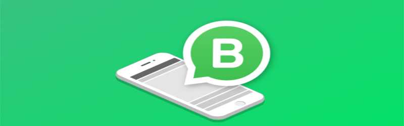 Ilustração de um iPhone com a logo do WhatsApp Business