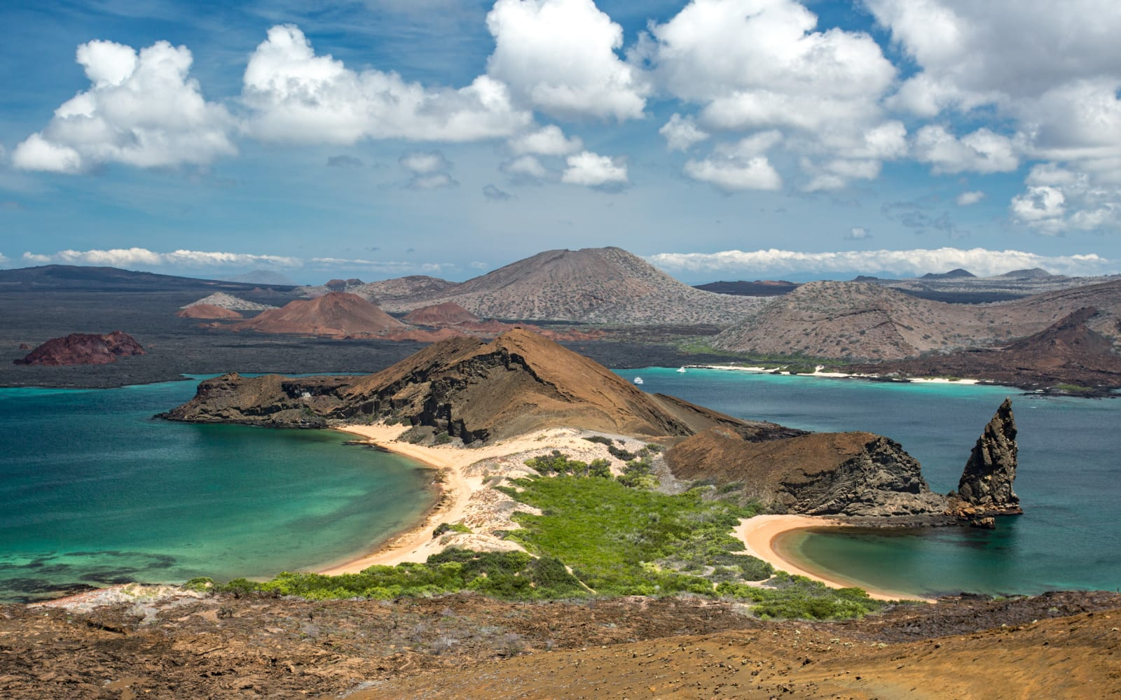 >Bartolome Island