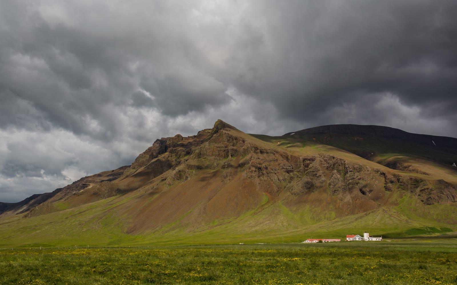 >Icelandic Farm