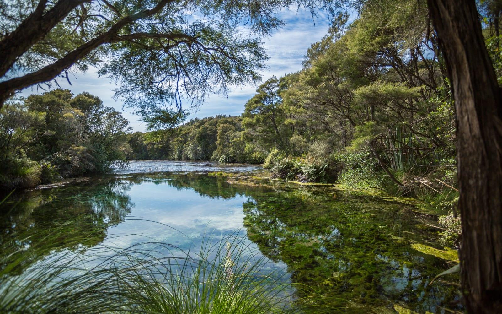 >Te Waikoropupu Springs