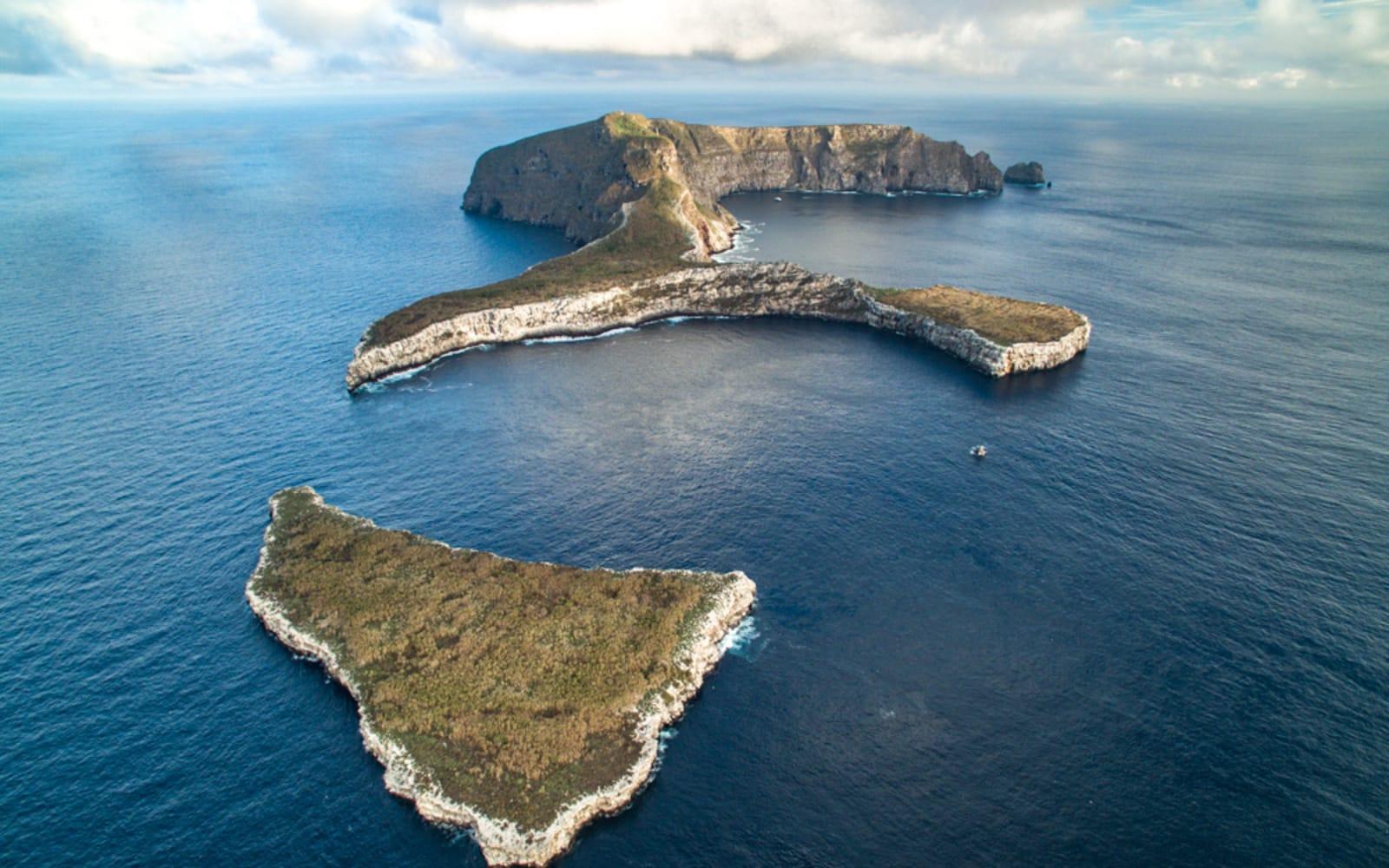 >Wolf Island, Galapagos