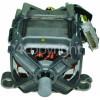 Blomberg Main Motor