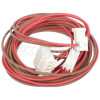 Ariston Door Lock & Drain Pump Wiring Loom