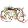 Delonghi Wiring Harness