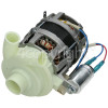 Hoover Recirculation Pump