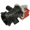 Caple Drain Pump Assembly : Askoll M281 COD. L71B014/1