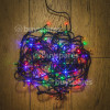 Noma 80 Multi Effect Decorative LED Lights